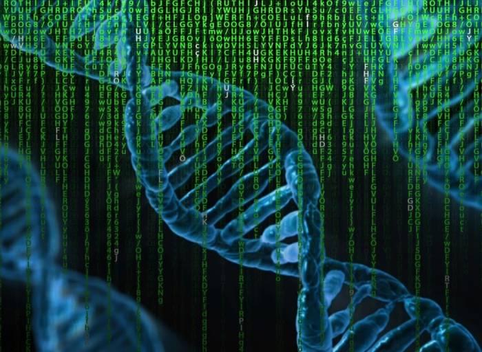 ADN genoma