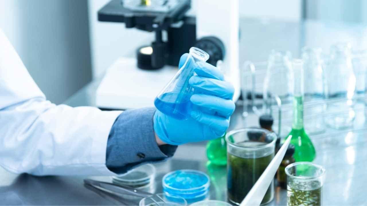 Ciencia Constituyente: Proyecto generará propuestas basadas en evidencia para la nueva constitución